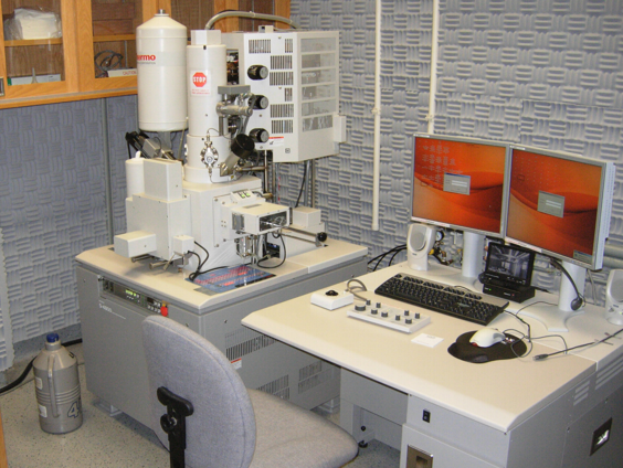 Hitachi S-4800 Field Emission SEM with Energy Dispersive X-ray microanalysis (USIF)