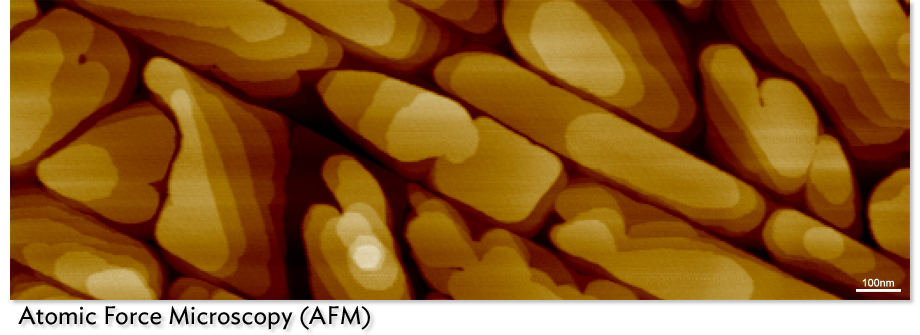 AFM image of Perylene deposited on highly ordered pyrolytic graphite. (2 micron image) Derek Mangelsdorf (Armstrong Group) and Brooke Beam