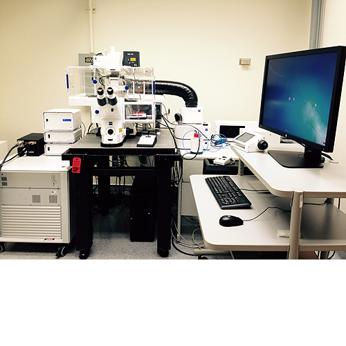 Zeiss LSM880 inverted confocal microscope